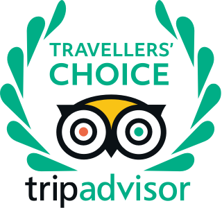 tripadvisor travelers choice